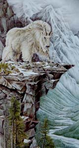 "Mountain goat a painting entitled ""Above& beyond"" by Judi Wild"